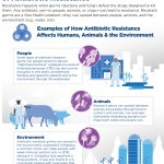 Interconnected AMR Threat